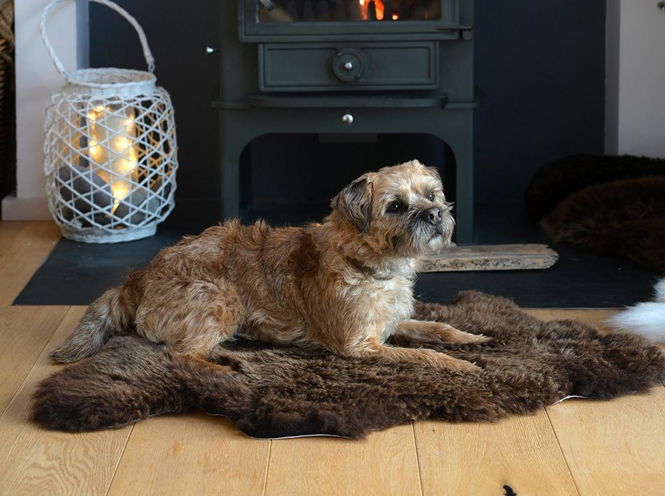 Large Sheepskin Pet Mat